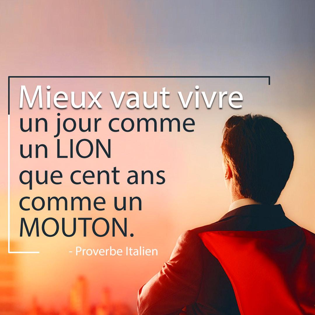 lion-mouton